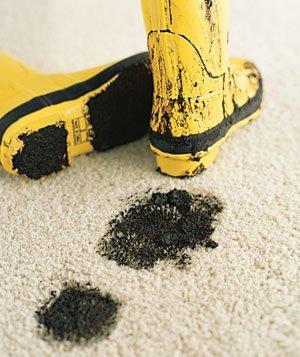 muddy boots, muddy footprint on carpet