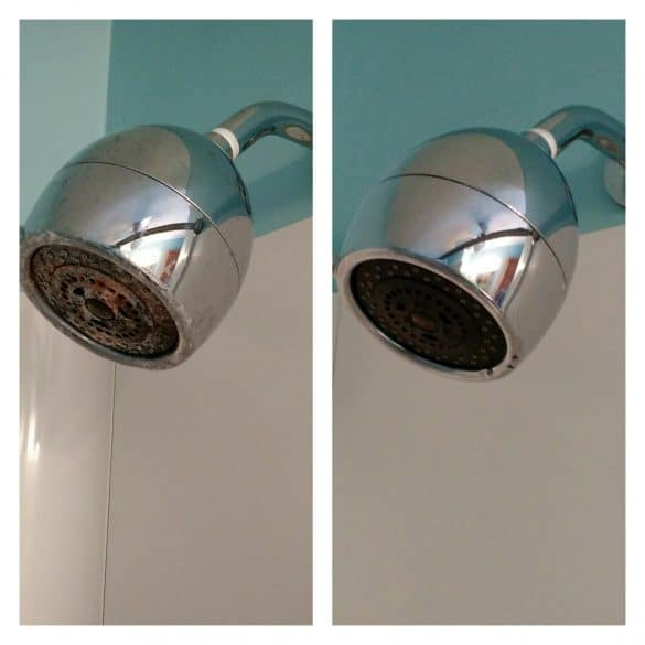 cleaning the showerhead