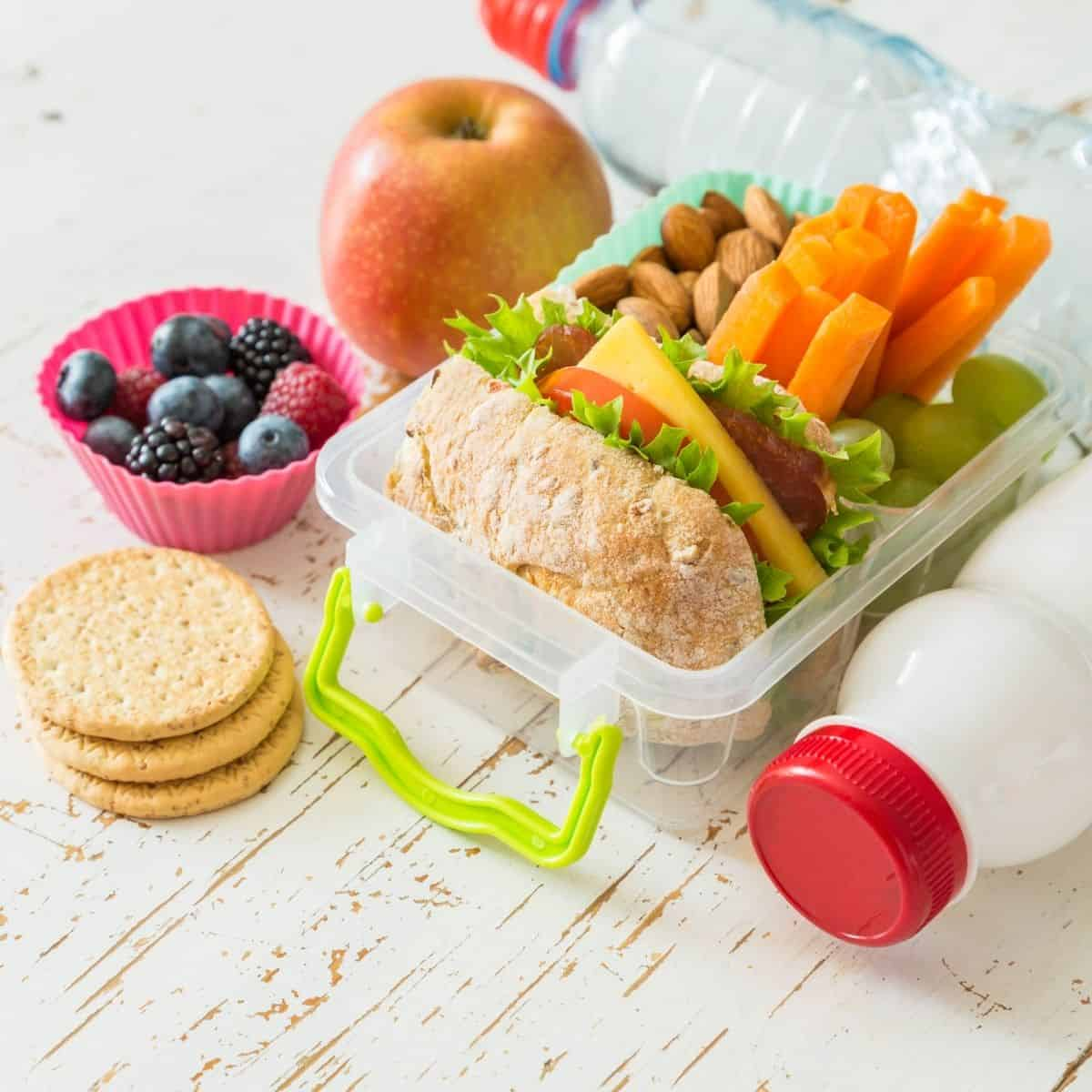 lunch containers for kids