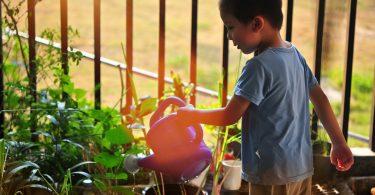 outside chores for children