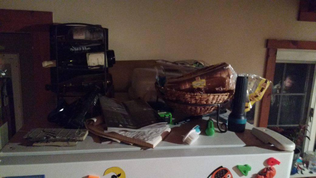 clean and organized fridge