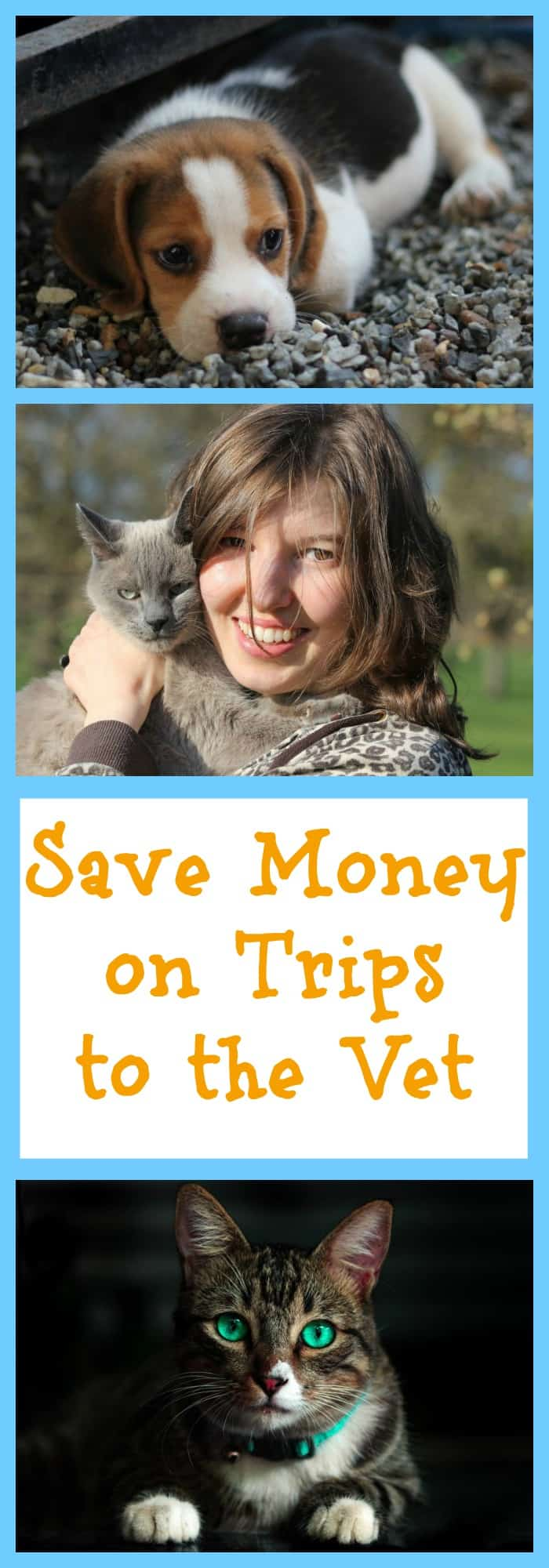Save Money on Trips to the Vet