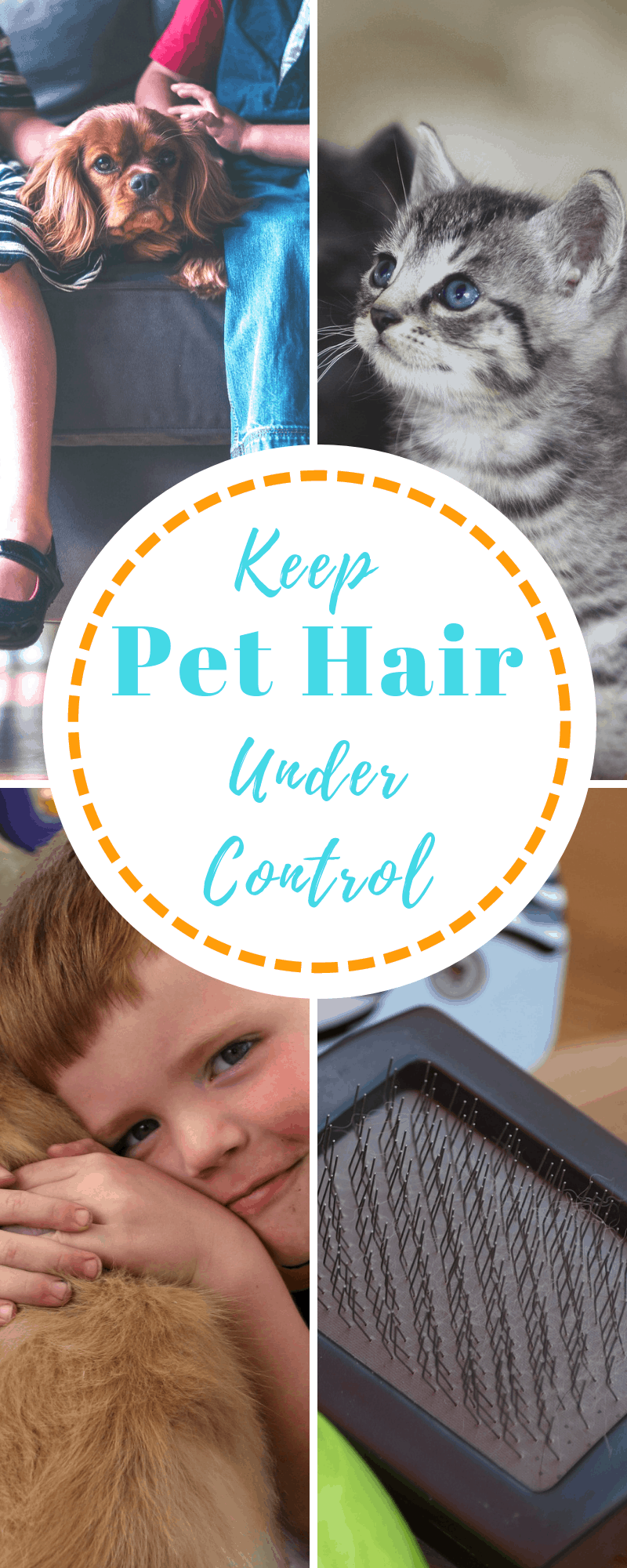 get rid of pet hair
