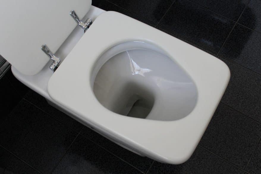 clean toilet supplies