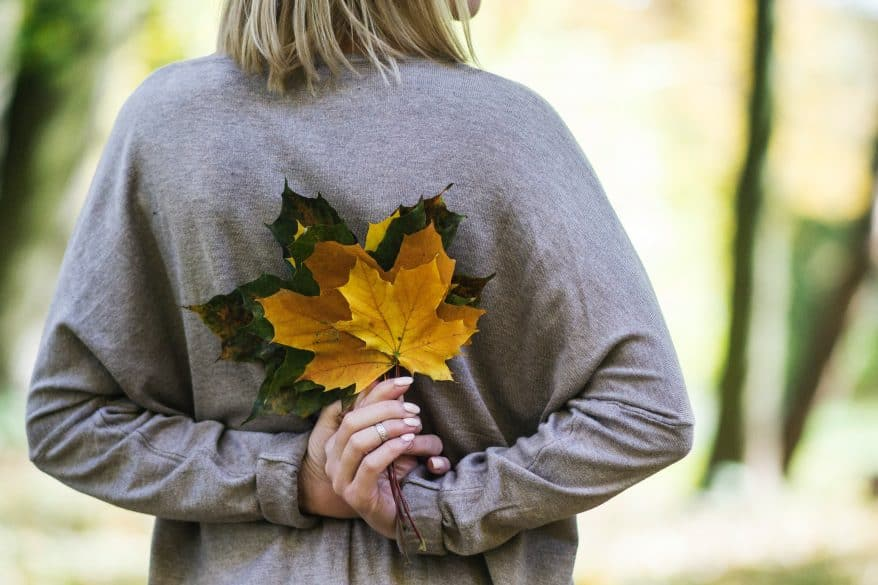 fall is the time to get your yard ready for winter