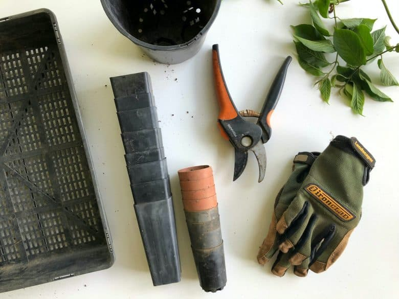 tools to get your yard ready for winter