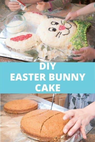 diy easter bunny cake round pans