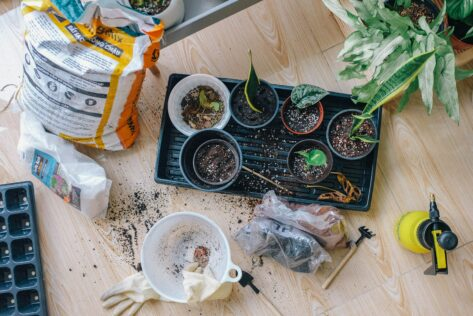 Fixing-Plants prep your garden this spring