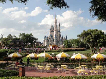 Disney castle Tips For Your Disneyland Vacation
