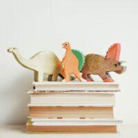 book=shelf