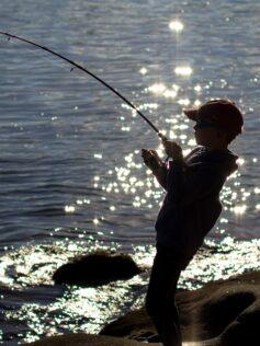 Kid fishing staycation activity ideas
